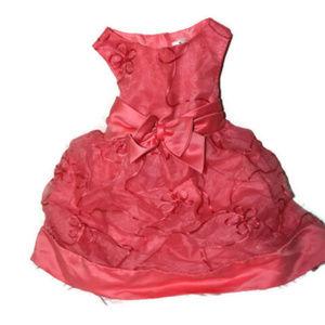Rare Editions Pink Satin Chiffon 2T